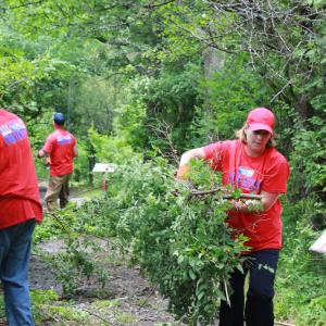 United Way of the Southern Tier Day of Action volunteers help clear a trail at Tanglewood Nature Center in Big Flats.